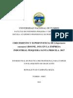 C.MRonald_ 2018.07.17 (2.00 Am) Informe de practicas r.i.c.m. corregido AOZ  (2).docx