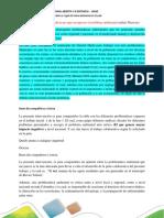 Estructura Administrativa y Legal Del Tema Ambiental en El País
