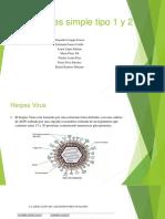 Virus Herpes Simple Tipo 1 y 2 . (1)