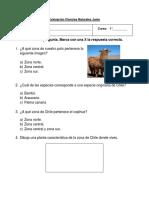 1 B Ciencias Evaluación Junio (Edit)