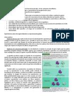 Conceptos_basicos_de_genetica.pdf