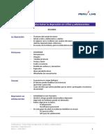 Resumen PPT Bruce.pdf