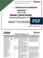 PCIE  V CICLO.docx