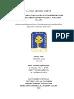 ADELAelektifProgramIVA.pdf
