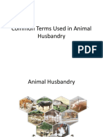 2. Common Terms Used in Animal Husbandry (2)