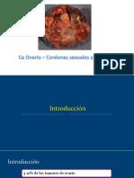 CA Ovario Cordones Sexuales y Estroma