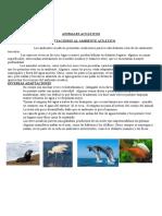 adaptacionesalambienteacutico-130923072206-phpapp02