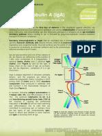 Immunoglobulin a (Iga) (1)
