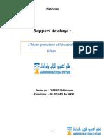rapport LPEE CEMGI- CHABBOUBA Hicham.pdf
