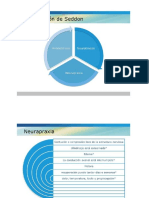 axonotmesis.pdf