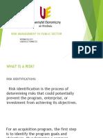 pdf risk management in public sector hospital