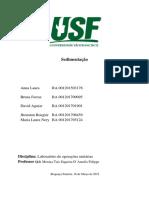 Relatório de Fluidização.docx