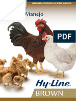 BRN_PS_SPN.pdf