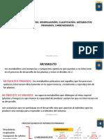 Metabolitos,Generaliades,Clasificación