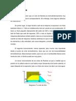 CICLO DE HIRN y cascada refri.docx