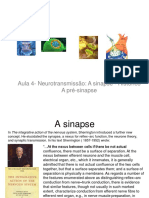2018 Aula 4 NR Sinapse Histrico a Pr-sinapse