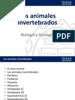 Invertebrados presentación