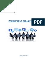 COMUNICAÇÃO ORGANIZACIONAL.docx