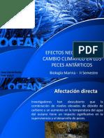 Articulo - FisicoQuimica- Biologia Marina
