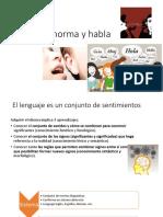 Sistema Norma y Habla
