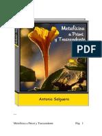 METAFÍSICA a Priori y Trascendente - Antonio Salguero