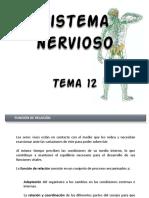 sistemanervioso.pdf