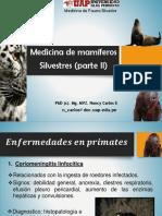 Medicina de mamiferos (Clase 6c).pdf