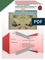 cap 2 - FORMATO APA.docx