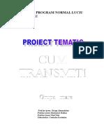 proiect-tematic-cum-transmit (1).doc