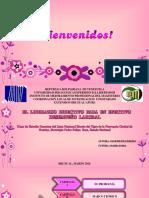 2figueredoyaneth-160311185714.pptx