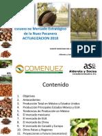 estudio-estrategico-nuez-pecanera--2018.pdf