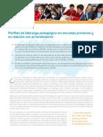 Perfiles de Liderazgo Pedagógico en Escuelas Primarias y Su Relación Con El Rendimiento