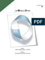 Analysis of the Moebius Strip
