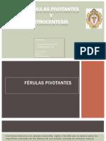 Férulas Pivotantes Y Artrocentesis