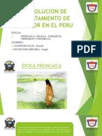 Evolución Del Menor en El Perú - Daniel Calderon Salas