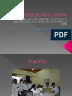FISIOLOGIA_i.enfermeria-1[1].pptx