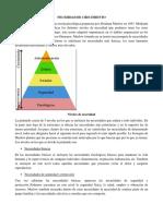 EXPOSICION-ELCTIVA (1).docx