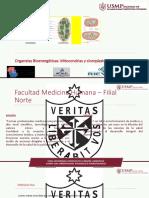 BCM. SESIÓN 5. 2109 - I.pdf