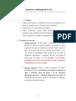 1_Estructura_y_fisiolog_a_de_la_vid[1].docx
