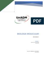 BBM1_U2_A1_ADMR.docx