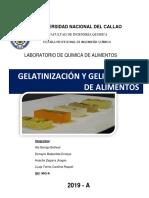 LABO GELATINA.docx