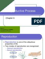 MF009 6A the Reproductive Process James L2