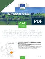 cap-in-your-country-ro_en.pdf