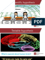 Hypotheses+Testing.