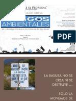 Riesgos_ambientales_REPSA-Marcela_Perez_SEREPSA.pdf