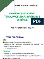 Aula 6 Problema Hipotese Variaveis