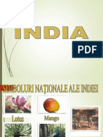 India Caracterizarea Economico Geografica