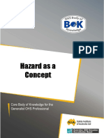 15-Hazard-as-a-concept[1].pdf