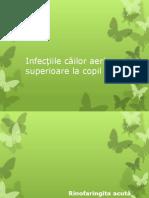 5. IACRS.ppt
