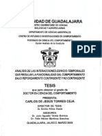 Torres_Ceja_Carlos_de_Jesus.pdf